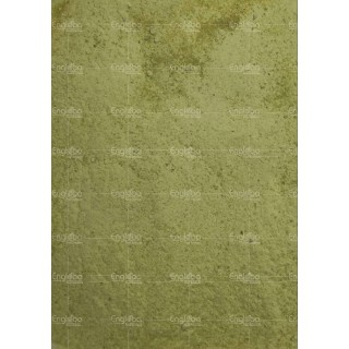 Green Pea Powder  - (25Kg sack)