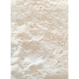 Coconut Flour (25Kgs sack)